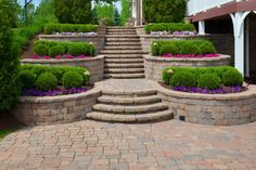 This outdoor garden shows an awesome display of clipped hedges, both square-shaped and round, accompanied by colorful perennial flowers in front, and landscaped to show uniformity of theme per row. The elegant architecture of brick stairway and pavement only serves to accentuate the landscaped garden. Garden Stairs, Terrace Garden, Garden Paths, Garden Beds, Stone Flower Beds, Front Door Planters, Garden Show, Gras, Backyard Landscaping