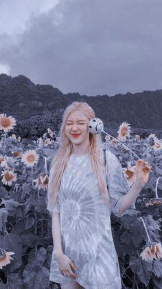 Queenpink 💖 [icons and wallpapers] Lisa Blackpink Wallpaper, Rose Wallpaper, Blackpink Photos, Rose Photos, Kpop Girl Groups, Kpop Girls, J Pop, Black Pink Kpop, Rose Bonbon