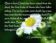 pictures of quotes about dying | ... Christian Quotes: Bible Quotes About Death - 1 Corinthians 15:20-23