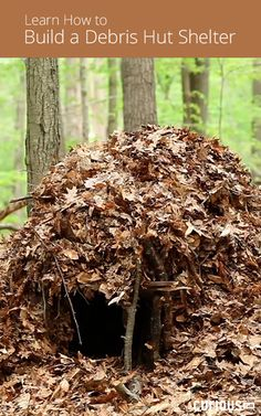 In this outdoor survival skills lesson, learn how to build a debris hut shelter that will keep you warm and safe while sleeping outdoors throughout the night.