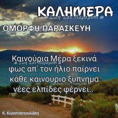 Good Night, Good Morning, Pink Roses, Beautiful, Nighty Night, Buen Dia, Bonjour, Good Night Wishes, Good Morning Wishes