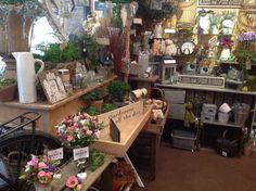 The Flower Studio, Portchester