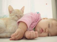 9 Signs Your Baby Is Actually a Cat