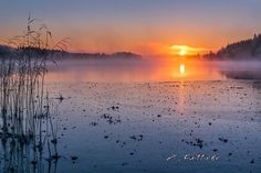 Finland in winter – 29 kuvaa Beautiful Nature Pictures, Amazing Nature, Scandinavian Countries, Landscape Pictures, Fall Photos, Winter Scenes, Summer Of Love, Sunrise, Scenery