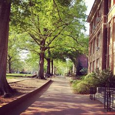 UNC Chapel Hill is one of the most beautiful college campuses in the country. Grab your smartphone or digital camera (or both!), take a stroll around campus and take some pics too!