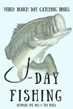 Rough Day Catching Dinks #youtube #videos #fishing #recreation #menswear #boating #sports