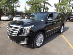Cars for Sale: 2016 Cadillac Escalade ESV Platinum in Raleigh, NC 27609: Sport Utility Details - 408401805 - Autotrader