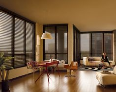 Enhance your view and open living space with Silhouette® Window Shadings ♦ Hunter Douglas Window Treatments #loft #livingroom -- Curated by: EuroTek Blind Factory | 203 - 171 commercial drive, Kelowna, BC, v1x 7w2 | 250-765-0222 #customblinds #window #shades #curtain