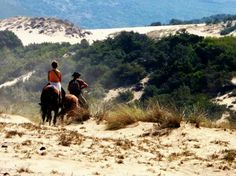 Piscinas, Oristano #marcosolas #sardinia #natureandrelax #horseridingsardinia