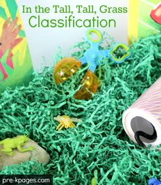 Printable Insect Classification Activity for Preschool and Kindergarten.