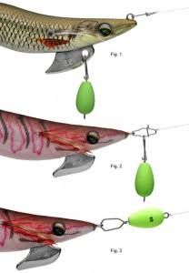 which squid jig to use - Hooked Up Magazine |Best Squid Jigs