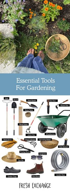 The Essential Tools you Need to do a home garden. A Minimalists approach to gardening at home  #gardentools