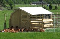 Commercial Free range coop from Outpost