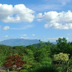 It's a beautiful day in the Smokies! Wish you were here!