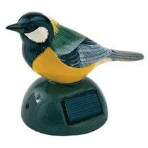 oiseau sifflant bienvenue pour terrasse