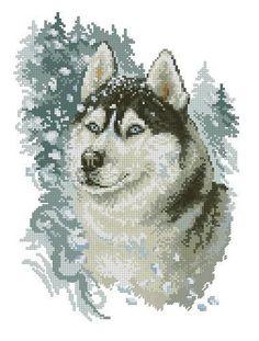 Brave husky Cross Stitch