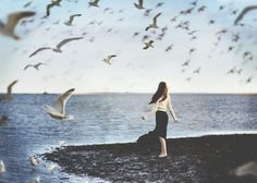 """Writing Prompt: """"The view is better from above. Just watch me fly."""""""