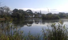 Die Oog bird sanctuary in Bergvliet Nature Reserve, Cape Town, South Africa, Natural Beauty, Flora, Southern, Explore, Bird, Landscape
