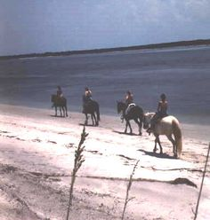 Horseback Riding on the beach. Amelia Island, Florida.