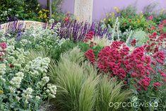 Ogólne, ogrodnicze wskazówki w projektowaniu i realizacji ogrodów - Forum ogrodnicze - Ogrodowisko