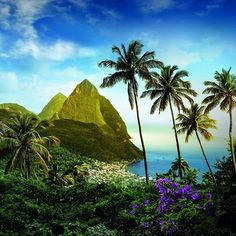 TravelCzarr presents Caribbean Island Week. Hello Saint Lucia! Located in the eastern Caribbean Sea, south of Martinique and northwest of Barbados, Saint Lucia is a small island with a big heart. Upon arrival, you will fall in love with its natural beauty, charm, calming atmosphere, sandy shores, clear blue waters, exotic wildlife and vibrant landscape.  Saint Lucia is the perfect place to be if you need a little more solitude, adventure, inspiration, relaxation or comfort in your life…