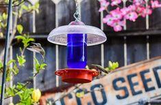 #homeliving #outdoorgardening #feedersbirdhouses #hummingbirdfeeder #beeproof #nodrip #birdfeeder #dripfree #besthummingbird #handmade #easyclean #birthdaygift #hummingbird #dadgift #hobnail #glassproduct #hangingbirdfeeder #handmade #glassmasonjar #feedingbirds #giftforwife #cottagecore #outdoors #birdhouse #easytohang #birds Wild Bird Feeders, Hanging Bird Feeders, Pink Bowls, Bottle Top, Clean Design, Gifts For Wife, Hummingbird, Cobalt Blue, Wind Chimes