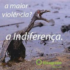 vivagreen.com.br
