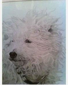 Completed as a commission in 2009. Unsure of the breed! Drawing Commissions, Pet Portraits, Pencil Drawings, My Etsy Shop, Pets, Unique Jewelry, Artist, Artwork, Vintage