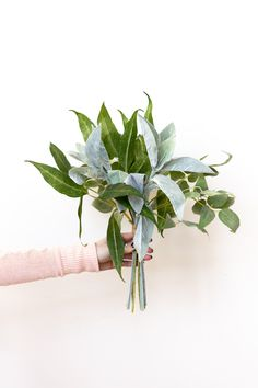 This bouquet is perfect for popping into a small pot or placing onto a stack of books. Small Bridesmaid Bouquets, Small Wedding Bouquets, Diy Wedding Bouquet, Cheap Wedding Flowers, Wedding Greenery, Small Bouquet, Diy Bouquet, Eucalyptus Bouquet, Eucalyptus Wedding