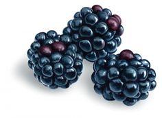 Blackberries, by Luc Normandin