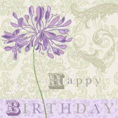 Nicola Rabbett - Lilac & Grey Agapanthus.jpg