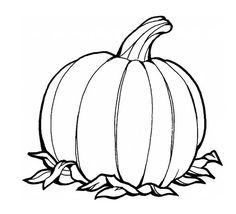 8 Great Pumpkin Coloring Pages images Pumpkin coloring