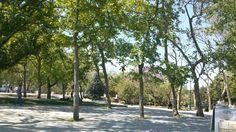 Gezi parkı - istanbul