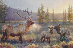 Somerset Fine Art - Morning by Nancy Glazier