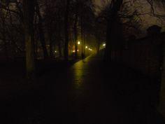 Bruges -  Parco del Begijnhof