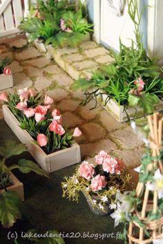 Lakeudentie 20: Puutarhassa In the garden