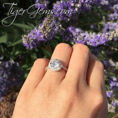Beautiful! 💟 The 2.25 ctw classic round halo ring. 💍✨ Shop now at TigerGems.com.  Follow @tigergemstones Follow @tigergemstones Follow @tigergemstones