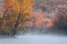 Another breathtaking Fall and misty pic from New Brunswick, Canada
