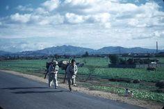 1948년 서울.  당산, 영등포 부근