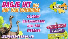 Hof van Eckberge vanaf 1 juli 2015 iedere minuut op onze display langs de N18 thv Lichtenvoorde. www.hofvaneckberge.nl