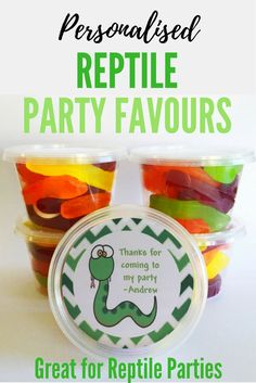 Personalised Reptile Party Favors | Reptile Party Bags | Tubs to fill with sweet treats for kids parties | Great for Reptile Snake parties Kids Party Themes, Party Fun, Birthday Party Themes, Birthday Ideas, Party Bags, Party Favors, Snake Party, Reptile Party, Themed Parties
