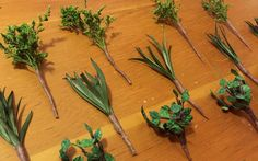 Sylvania Grove – Making plants and shrubs for Sylvanian Families dioramas and other miniatures Sylvanian Families, Shrubs, Miniatures, Dolls, Plants, How To Make, Ideas, Dioramas, Baby Dolls