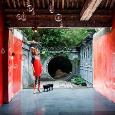 An ancient Chinese courtyard garden tucked away in the hutongs of Beijing provides the setting for seasonal installations at curated design shop WUHAO.