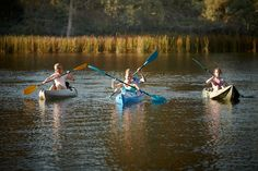 Camping & Fishing - Wangaratta & Surrounds Tourism Website, Major Events, Fish Camp, Wine And Beer, Things To Do, Fishing, Victoria, Boat, Camping