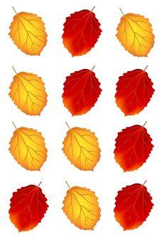 """Болтушка"" Логопед Valentine's Day Crafts For Kids, Math For Kids, Fall Leaf Template, Cute Cartoon Girl, Crochet Square Patterns, Autumn Activities, Hello Autumn, Valentine Day Crafts, Autumn Theme"