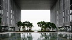 AmorePacific Headquarters Seoul by David Chipperfield Architects was named Tall Building of the Year. British Architecture, Amazing Architecture, Museum Architecture, Green Architecture, Landscape Arquitecture, David Chipperfield Architects, Courtyard Pool, Beauty Companies, Glass Facades