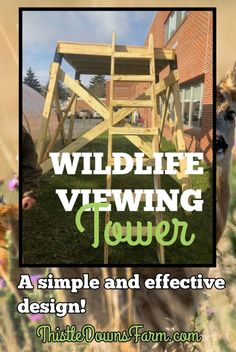 Build a Wildlife Viewing Tower - Building a wildlife viewing tower is a great w. - Build a Wildlife Viewing Tower – Building a wildlife viewing tower is a great was to observe ani - Building A Treehouse, Tower Building, Raising Farm Animals, Raising Chickens, Animal Movement, Alaska Travel, Alaska Cruise, Viewing Wildlife, Outdoor School
