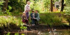 In het Noord-Brabantse Hapert, midden in de Brabantse Kempen, ligt Landal Het Vennenbos. Met een Subtropisch Waterparadijs en groot indoorspeelparadijs, is dit autovrije bungalowpark ideaal voor gezinnen met kinderen. Die kunnen zich hier helemaal uitleven.