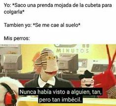 Funny V, Funny Faces, Haha Funny, Book Memes, Dankest Memes, Funny Face Swap, Spanish Memes, Harry Potter Memes, Otaku Anime