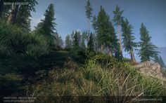 [UDK] Forest Environment - Polycount Forum